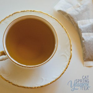 yaupon-tea-black-cat-spring-tea-one-cup-in-china