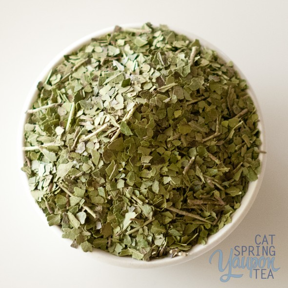 yaupon-tea-green-cat-spring-tea-loose-leaf