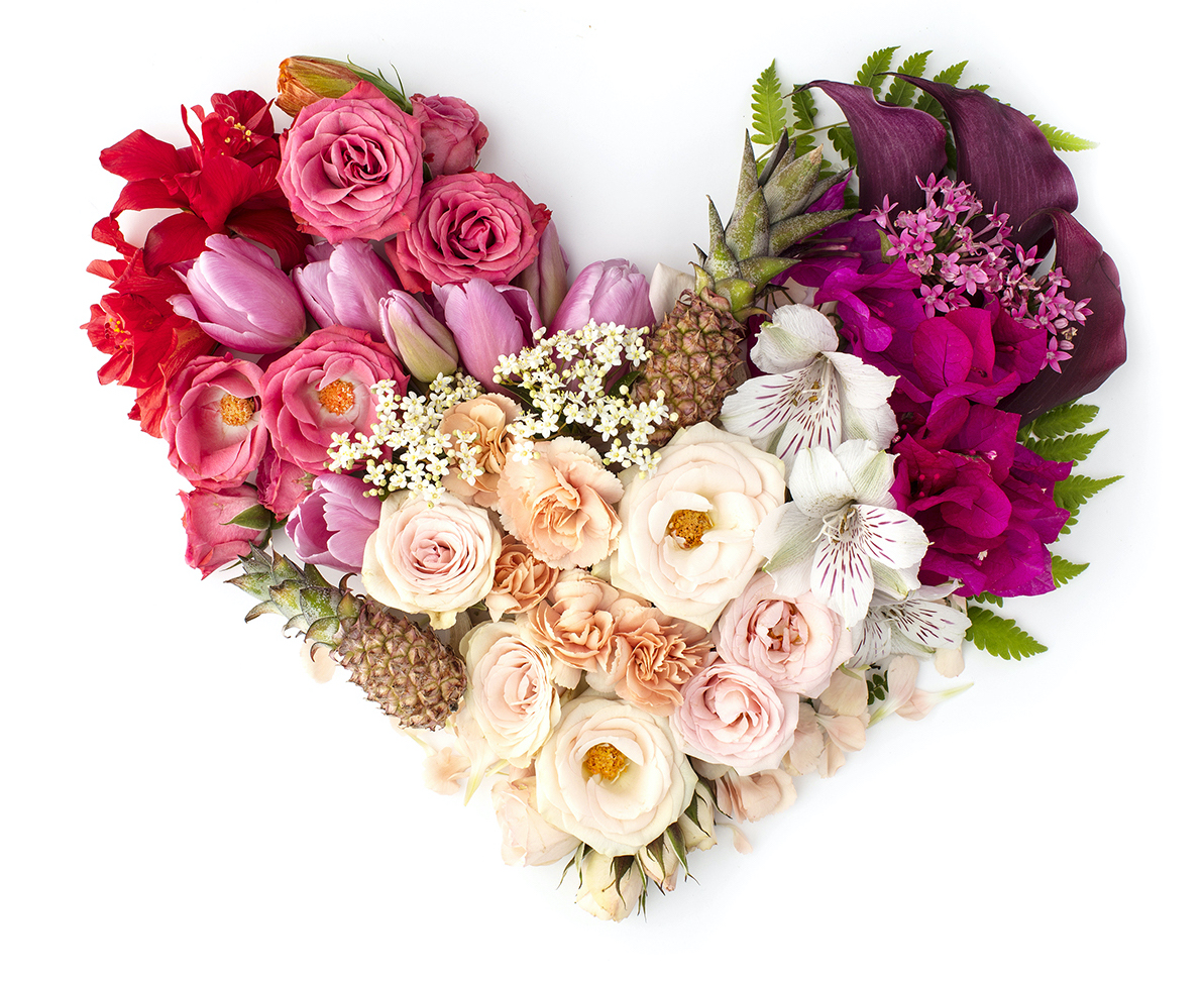 Love is Beautiful. Styled Floral Hearts by Shay Cochrane.